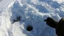 Клевая Рыбалка на Окуня Карлика Озеро Сартлан Разведка Боем