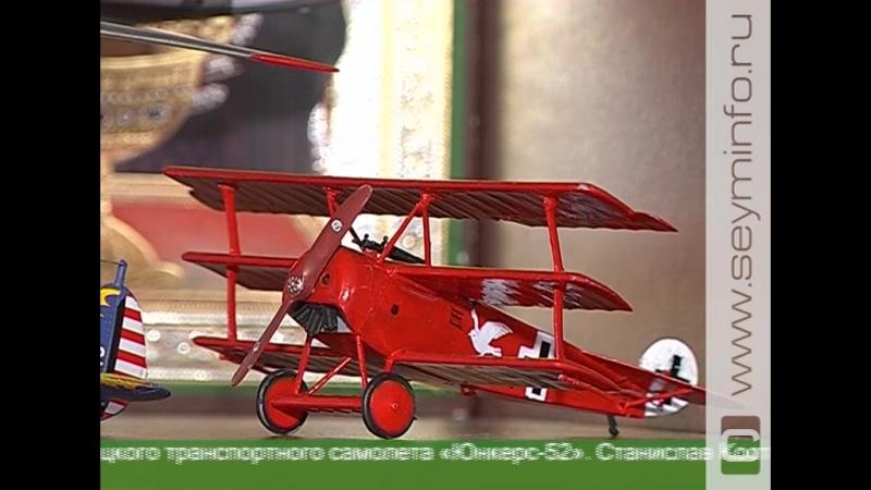 Курянин собрал редкую коллекцию авиамоделей