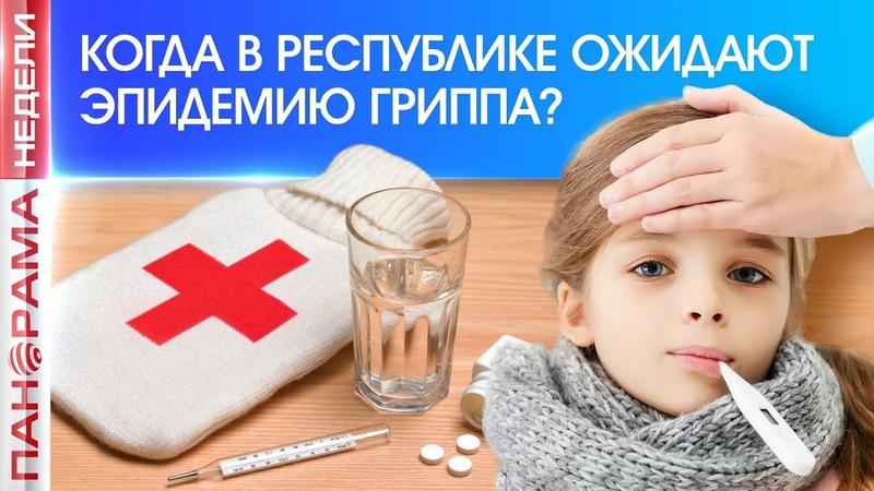 Угроза гриппа. Почему в ДНР не вводят карантин? 09.12.2018, Панорама недели
