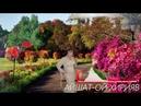 АЙШАТ - ОЙ ХИРИЯВ Новая Аварская Песня