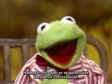 Kermit muppetshow