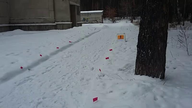 8 зимний железногорский марафон