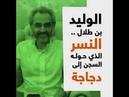 خط البلدة 🚐 على تويتر : الوليد بن طلال .. حوله ا