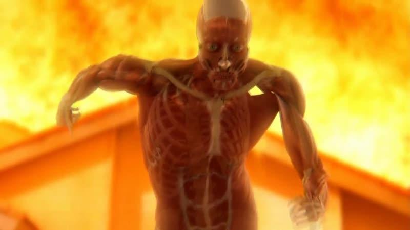 Тело человека. Грани возможного - Сила мышц