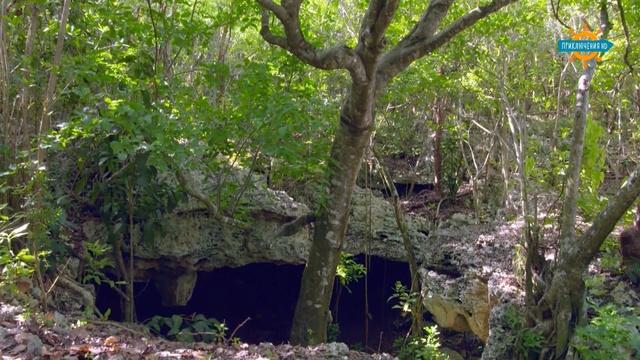 Дикая территория 6 серия. Багамские о-ва / Undiscovered vistas (2015) » Freewka.com - Смотреть онлайн в хорощем качестве