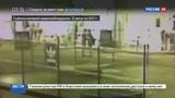 Новости на Россия 24  •  Появилось видео убийства блогера Станислава Думкина