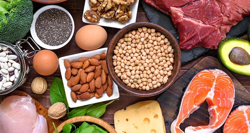 Что такое белки?