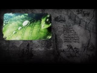 End Credits | Attack on Titan Season 3 Part 2 Episode 22