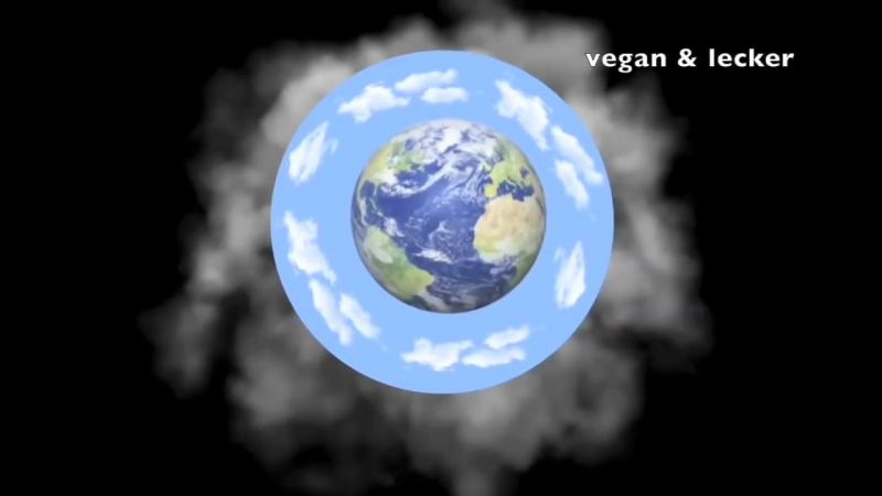 Nachdenk-Video für alle denk-fähigen Menschen - Teil 1