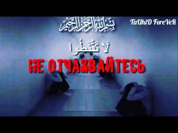 Не отчаивайтесь в милости Аллаhа