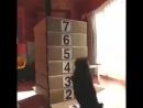 Коты очень любят коробки. Но не больше девяти штук.