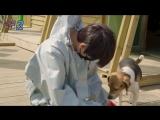 180418 SNUPER @ 'Beagle Rescue Network' Volunteer Activity Behind 2