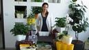 Двойные и тройные горшки для растений - Горшки базилика - Горшки для орхидей
