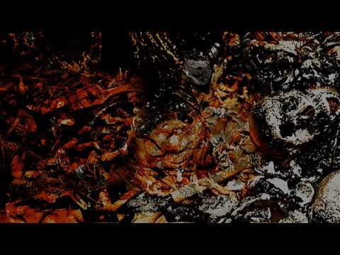 ACT OF IMPALEMENT - Pax Romana (Unspeakable Axe Records) (promo video)