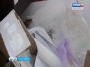 Жильцы многоэтажки на Копылова жалуются на засилье крыс