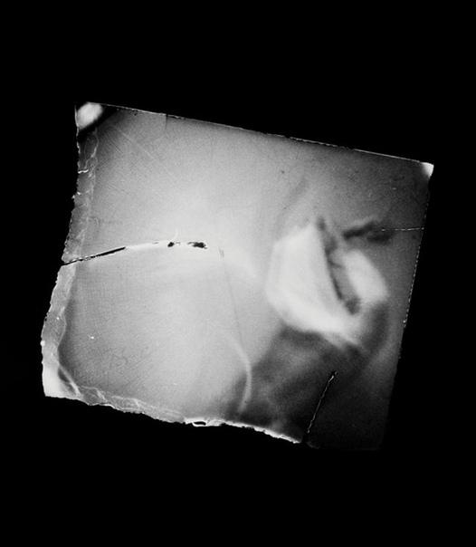 Американская художница поместила камеру во влагалище и фотографирует своих любовников Художница из