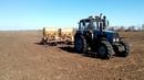 МТЗ 1221 на посевной со спаркой сеялок омичка 4 метра захват ФХ Шульц