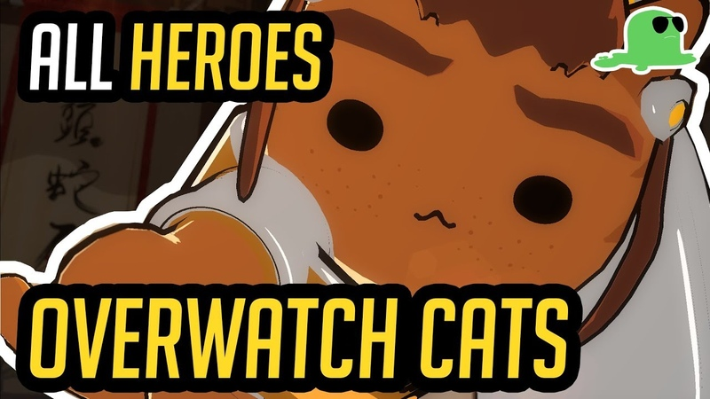 Overwatch but with Cats - ALL HEROES - Katsuwatch (UPDATED)