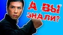 Донни Йен - кто он на самом деле! 10 шокирующих фактов о легенде фильма Ип Ман 1, 2,3 ,4