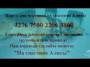 Помогите спасти Алису
