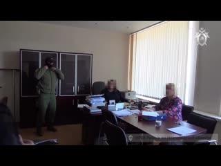 В Новгородской области задержана ректор регионального института профессионального развития.