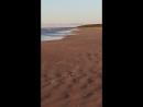 Нарва-Йыэсуу, берег моря