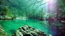 очень красивое видео природы.... релакс....
