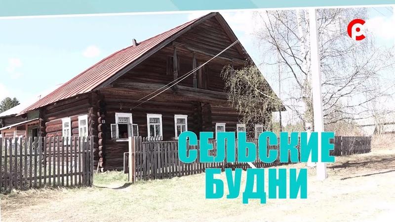 Сельские будни 04 06 2019 Стрига и Золотавцево