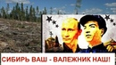 Китайцы превращают Сибирь в пустыню