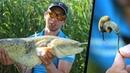 Рыбалка на СОМА с ультралайтами. Наживка ЖЕСТЬ! Поклевка НЕЧТО