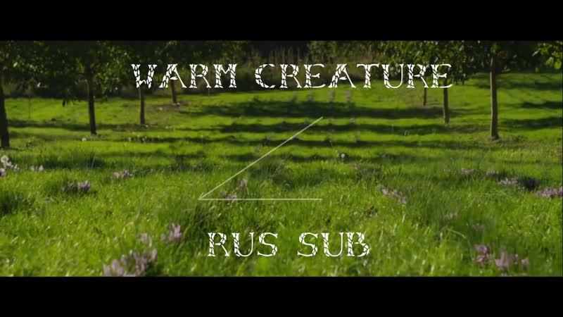 Vocaloid【 Picon ft. Hatsune Miku】- Warm Creature [rus sub]
