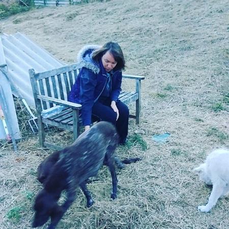 В парке енота живут8 больших собак постоянно,появляются брошенные или по теряшки ,мы их отдаем в добрые руки.У каждой собаки сво