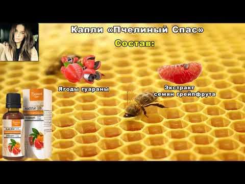 Пчелиный Спас - капли для похудения. Пчелиный Спас отзывы. Пчелиный Спас - жиросжигающие капли.