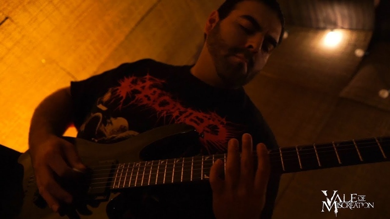 VALE OF MISCREATION FIND THE FEAST AND LET THEM STARVE GUITAR PLAYTHROUGH 2018 SW EXCLUSIVE