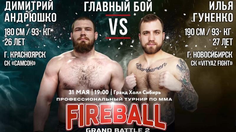 Бой №8 по MMA Fireball Grand Battle-2 Димитрий Андрюшко VS Илья Гуненко