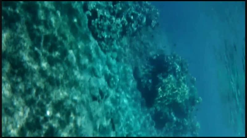 Море.буйки.глубина