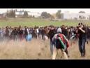 Flüchtlinge setzen Felder in Brand und stoßen mit der Polizei zusammen,