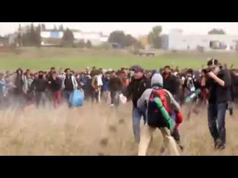 Flüchtlinge setzen Felder in Brand und stoßen mit der Polizei zusammen
