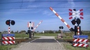 Spoorwegovergang 's Heer Arendskerke Dutch railroad crossing