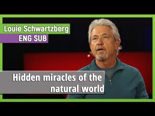 Louie Schwartzberg  «Hidden miracles of the natural world» [eng sub]