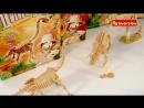 Исторические раскопки BONDIBON Динозавры