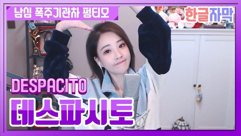 '데스파시토 Despacito ' 남심 폭주기관차 펑티모가 부르는 노래 한글자막 20181120