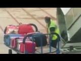 Пойман с поличным: сотрудник аэропорта Ибицы попал на видео в момент кражи
