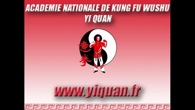 Yiquan tuishou - French Championship 2014 (HD).mp4