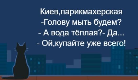 https://pp.userapi.com/c850016/v850016003/cee17/T3Q3cB4O4lY.jpg