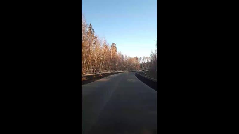 Дмитрий Шувахин - Live