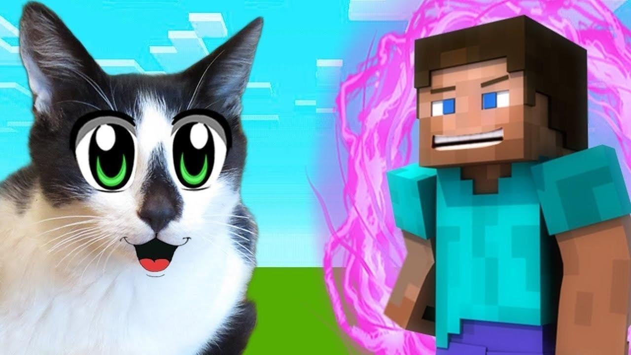 Minecraft: как приручить и разводить кошек и лис
