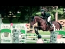 Horse Jumping video
