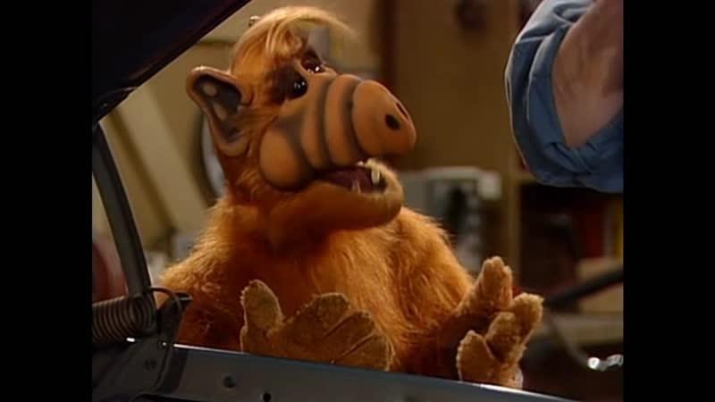 Alf Quote Season 3 Episode 14_Мастер