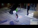 XiaoYing_Video_1534229896203.mp4
